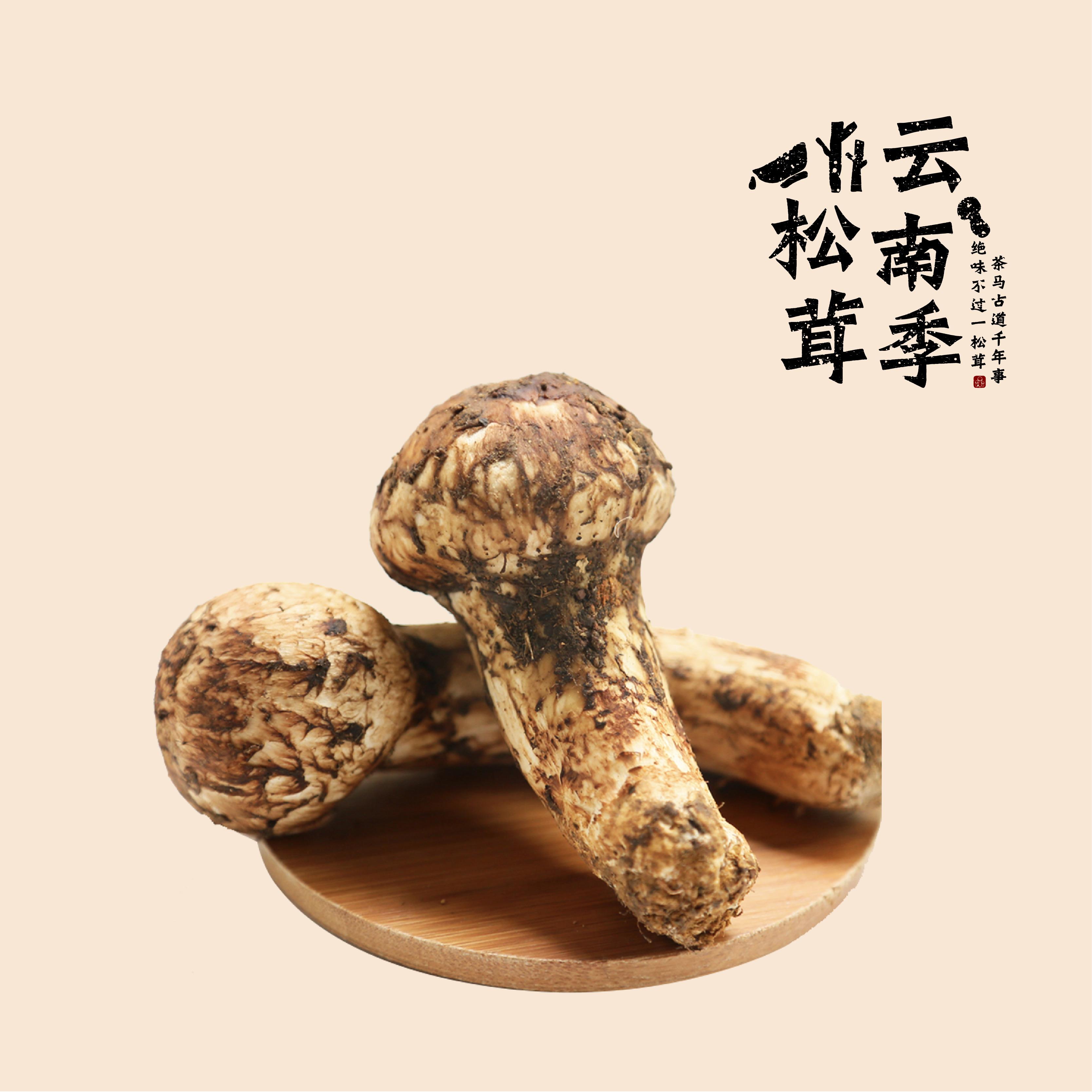 精品-山中美味(7-9cm)