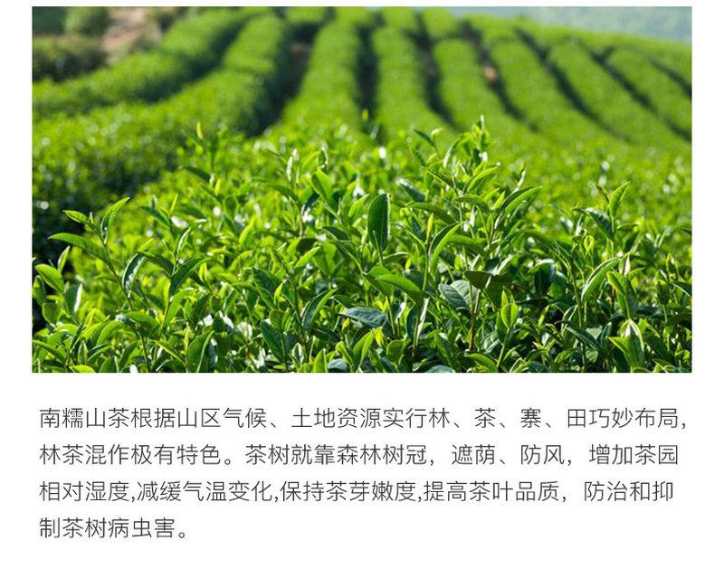 普洱茶_05