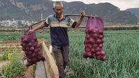"""疫情延伸672小时:疫情之下农产品滞销  各大电商""""带货""""助农"""