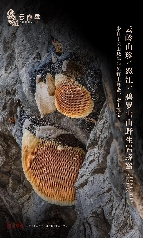 碧罗雪山野生岩蜂蜜_01