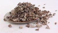 白参菌的药用和食用价值