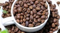 小粒咖啡:咖啡为什么会那么苦?