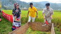 最魅村姑高原有机大米丰收仪式在昌宁县漭水镇举行